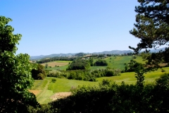 Countryside view to the North
